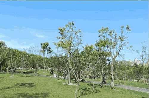 <b>「好兔视频」园林绿化 北京某园林绿化公司转让</b>